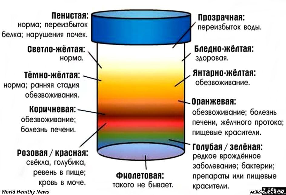 bolshoy-byust-u-dam